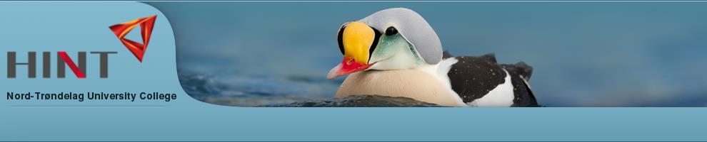 HinT_obuka za raspoznavanje ptica